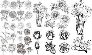 黑白线描风玫瑰花创意设计矢量素材