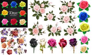 不同颜色的玫瑰花主题设计矢量素材