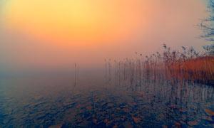 夕阳下的河道风景高清摄影图片