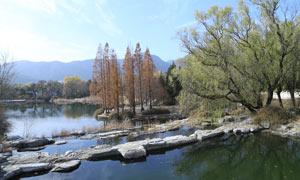 初冬公园美丽景观摄影图片