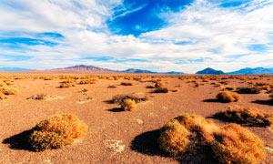 蓝天白云下的荒漠风景摄影图片