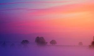 冬日里清晨美丽的田园风光摄影图片