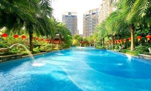 城市中美丽的游泳池摄影图片