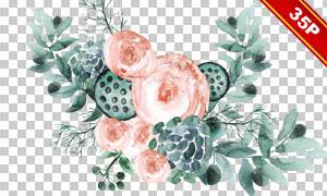 枯莲花朵元素水彩创意免抠图片素材