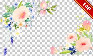 粉红色的水彩花朵边框设计图片素材