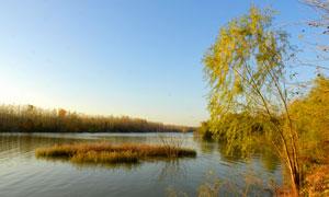 傍晚田园湿地景观摄影图片