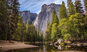 大山深处小溪和树木摄影图片