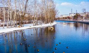 冬季雪后小镇河流景色摄影图片