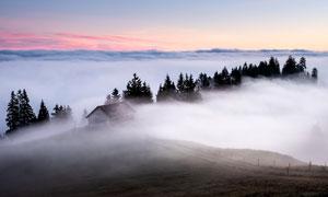 清晨山顶云雾缭绕美景摄影图片
