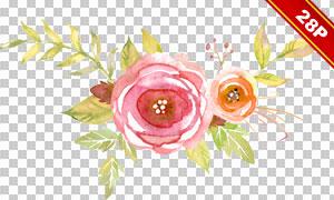 水彩叶子花朵边框创意设计免抠图片