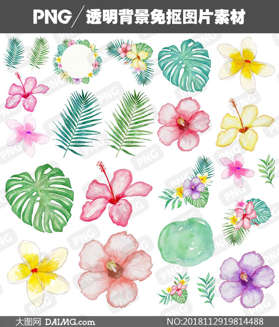 水彩效果綠葉花朵主題免摳圖片素材