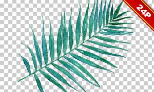 水彩效果绿叶花朵主题免抠图片素材