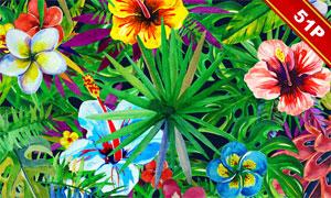 水彩效果热带风情植物免抠图片素材