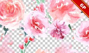 粉红色的玫瑰花朵边框背景免抠图片