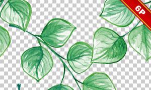 水彩效果绿叶元素无缝背景免抠图片
