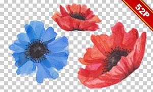 绿叶与蓝色的花等水彩免抠图片素材