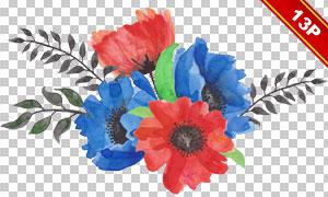 鲜艳开放着的花束水彩效果免抠图片