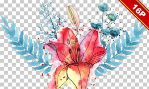 水彩墨迹喷溅装饰花朵主题免抠素材