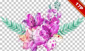 紫色百合花朵水彩风格免抠图片素材