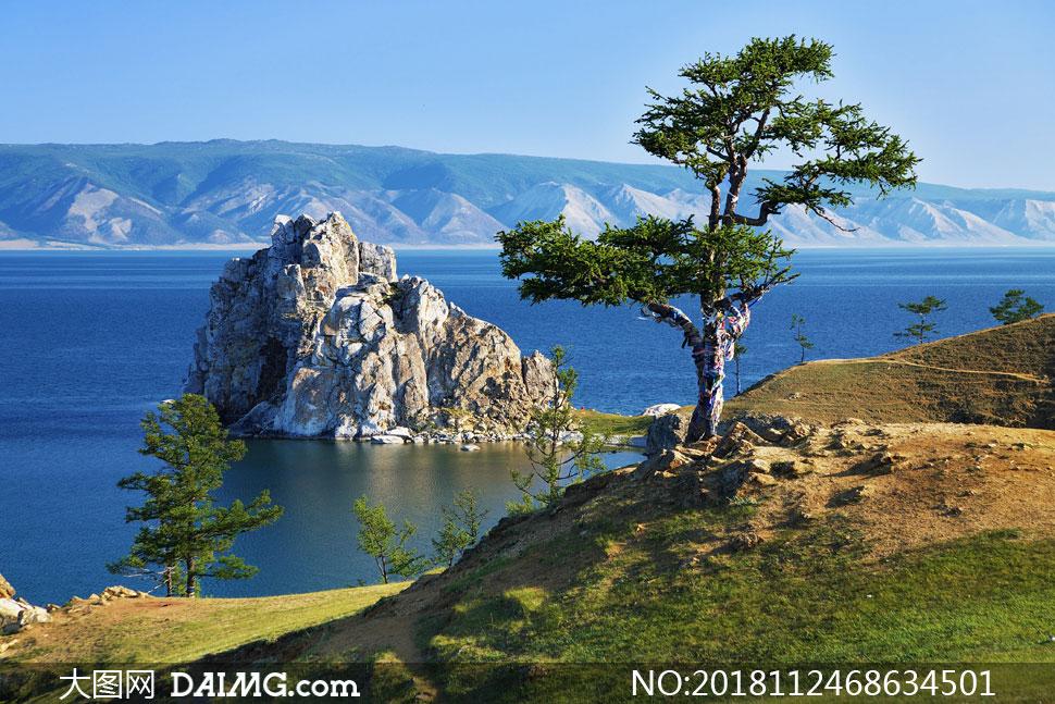 大海山峦大树自然风景摄影高清图片