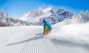 蓝天大山树林滑雪人物摄影高清图片
