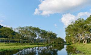 蓝天下的小河和树木高清摄影图片
