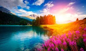 清晨陽光下美麗的湖泊攝影圖片