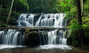 森林中美丽的小溪瀑布摄影图片