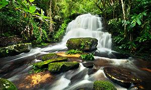 森林中美丽的小溪流水和岩石摄影图片