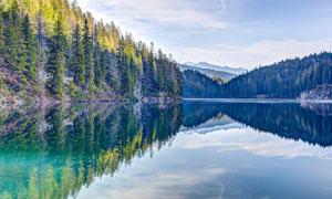美丽的山林树木和湖泊摄影图片