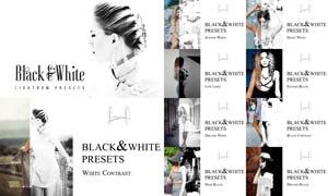 10人像照片高质量黑白效果LR预设
