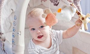 婴儿车里玩玩具的宝宝摄影高清图片