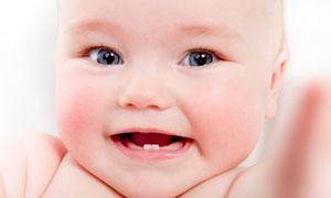 刚长了两颗牙齿的宝宝摄影高清图片