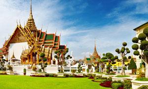蓝天下玉佛寺绿化景观摄影高清图片