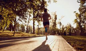 正迎着阳光跑步的男子摄影高清图片