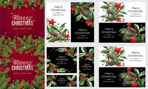 质感植物树枝果子主题圣诞矢量素材