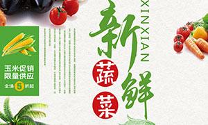 新鲜蔬菜宣传海报设计PSD源文件