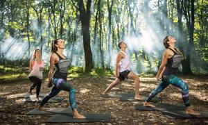 树林中的健身运动人物摄影高清图片