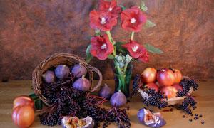 无花果与红色花朵特写摄影高清图片