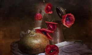 南瓜与红色的花朵近景特写高清图片