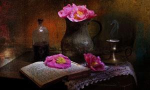 红色花与破旧的书特写摄影高清图片