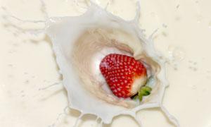 掉进牛奶里的草莓特写摄影高清图片