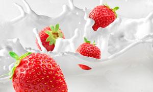 泛起了奶花的新鲜草莓摄影高清图片