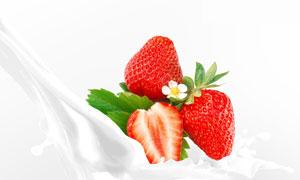 一朵小白花点缀的草莓摄影高清图片