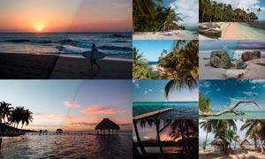 10款热带风景照片后期美化LR预设