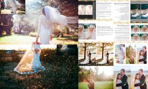 阳光下的婚礼随拍照片LR后期预设