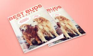 杂志画册通用封面设计效果贴图模板