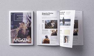 质感展现杂志画册封面内页贴图模板