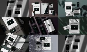光影效果下的企业视觉元素样机模板