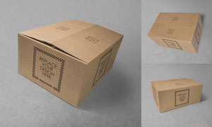 瓦楞纸包装箱图案印刷效果贴图模板